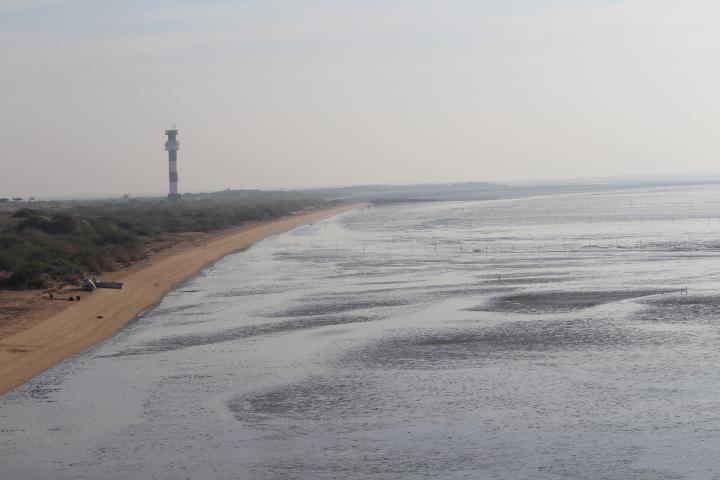 Koteshwar Beach Gujarat