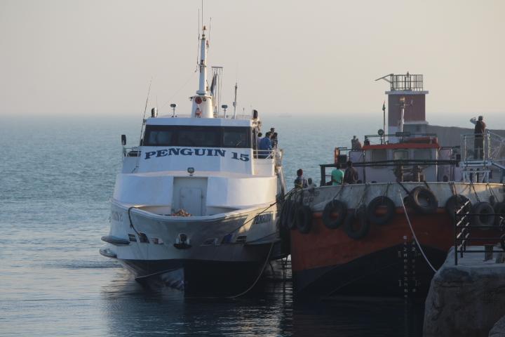 Ships at Mandvi Trade Port